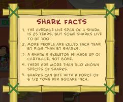 sharktoothmuseum6