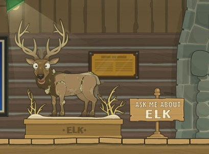 What the elk: All your questions answered, right here.