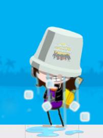 SW ice bucket