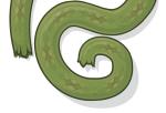 Viper Skin