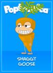 CarrotASG