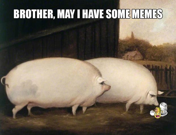 brothermayihavesomememes